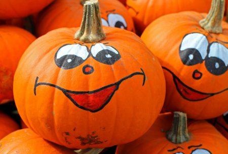 pumpkins-469641_1920